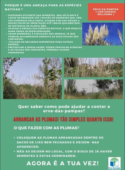 Poster_esp_Inv2